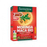 Santarome Bio Morinca Maca Solution buvable 20 Ampoules/10ml à MONTPELLIER