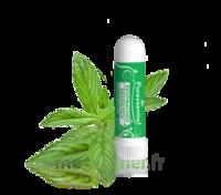 PURESSENTIEL RESPIRATOIRE Inhalation nasal 19 huiles essentielles à MONTPELLIER