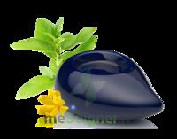 PURESSENTIEL DIFFUSION Diffuseur à chaleur douce céramique bleu marine à MONTPELLIER