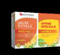 Forte Pharma Gelée royale 1000 mg Solution buvable 2*B/20 Ampoules/10ml à MONTPELLIER