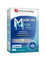 Magné 300 Marin (2 mois) à MONTPELLIER